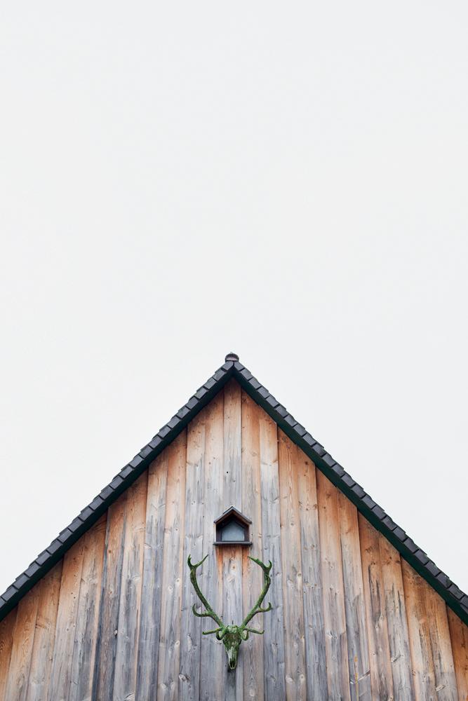portrait_forsthaus-5